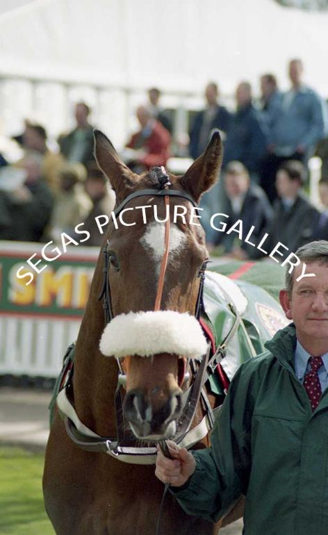 Racehorse Moscow Fly with Jockey Barry J Geraghty